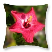 Star Bright Hibiscus Throw Pillow