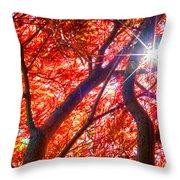 Star Light Thru Maple Throw Pillow