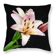 Star Of North And Bud Throw Pillow
