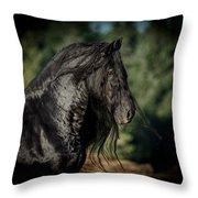 Star Stallion Throw Pillow