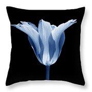 Star Tulip Flower In Blue Throw Pillow