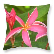 Starburst Plumeria Throw Pillow