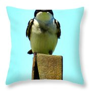1 Swallow Never Makes A Summer Throw Pillow