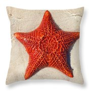 Starfish 4 Of Bottom Harbour Sound Throw Pillow