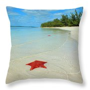 Starfish 5 Of Bottom Harbour Sound Throw Pillow