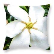 Starfish Gardenia  Throw Pillow