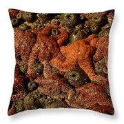 Starfish Low Tide Cape Sebastian Oregon Coast Throw Pillow