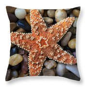 Starfish On Rocks Throw Pillow