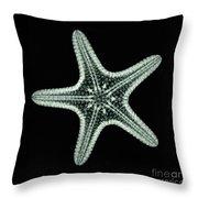 Starfish X-ray Throw Pillow