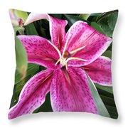Stargazer Lilly Throw Pillow