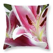Stargazer Lily Flowers Closeup Throw Pillow