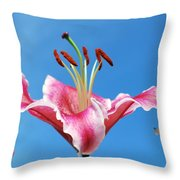 Stargazer Lily Series 1 Of 4 Throw Pillow