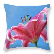 Stargazer Lily Series 3 Of 4 Throw Pillow
