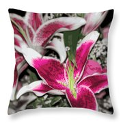 Stargazers Throw Pillow