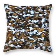 Starling Swarm Throw Pillow