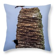 Starlings 2 Throw Pillow