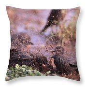 Starlings Fight Throw Pillow