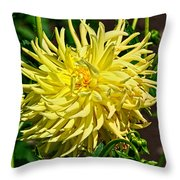 Starlite Dahlia Throw Pillow