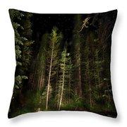 Starry Creek Throw Pillow