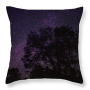 Starry Sky With Silhouetted Oak Tree Throw Pillow