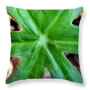 Stars Everwhere Throw Pillow