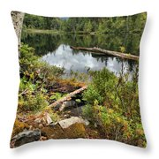 Starvation Lake Reflections Throw Pillow