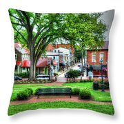 State House Grounds Throw Pillow