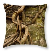 State Park Roots Throw Pillow