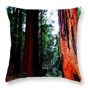 Stately Throw Pillow