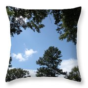Stately Forest  Throw Pillow