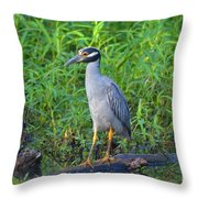 Stately Heron Throw Pillow