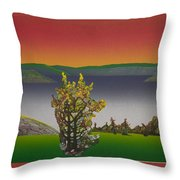 Static  View. Throw Pillow