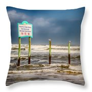 Stating The Obvious Throw Pillow