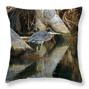 Statues Throw Pillow by Skip Willits