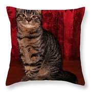 Statuesque Fold 3b Throw Pillow