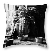 Stay In Pane  Throw Pillow