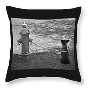 Stay Or Go Throw Pillow