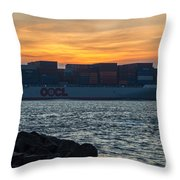 Stay The Course Throw Pillow