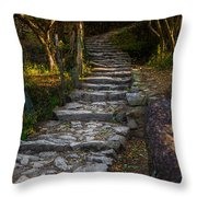 Stairway To ... Throw Pillow