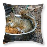 Stealing Food Throw Pillow