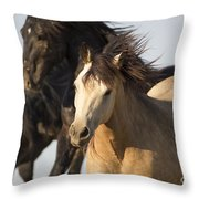Stealing The Mare Throw Pillow