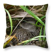 Stealth Hatchery Throw Pillow