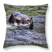 Stealth V3 Throw Pillow