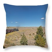 Steam Engine 489 At The Lava Tank On The Cumbres And Toltec Scenic Railroad Throw Pillow