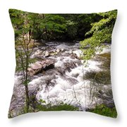 Steam In The Smoky Mountains Throw Pillow