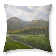 Steam Rising From Moores Hot Springs Throw Pillow