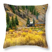 Steam Train 5 Throw Pillow