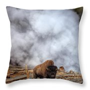 Steamed Bison Throw Pillow