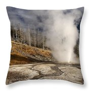 Steaming Streams Throw Pillow