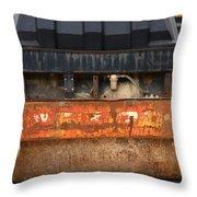 Steamroller Throw Pillow